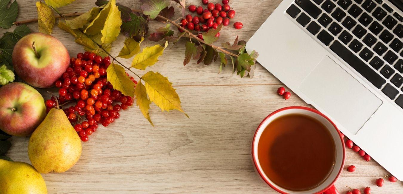 apples, lemons, tea, computer - september 2020 income report